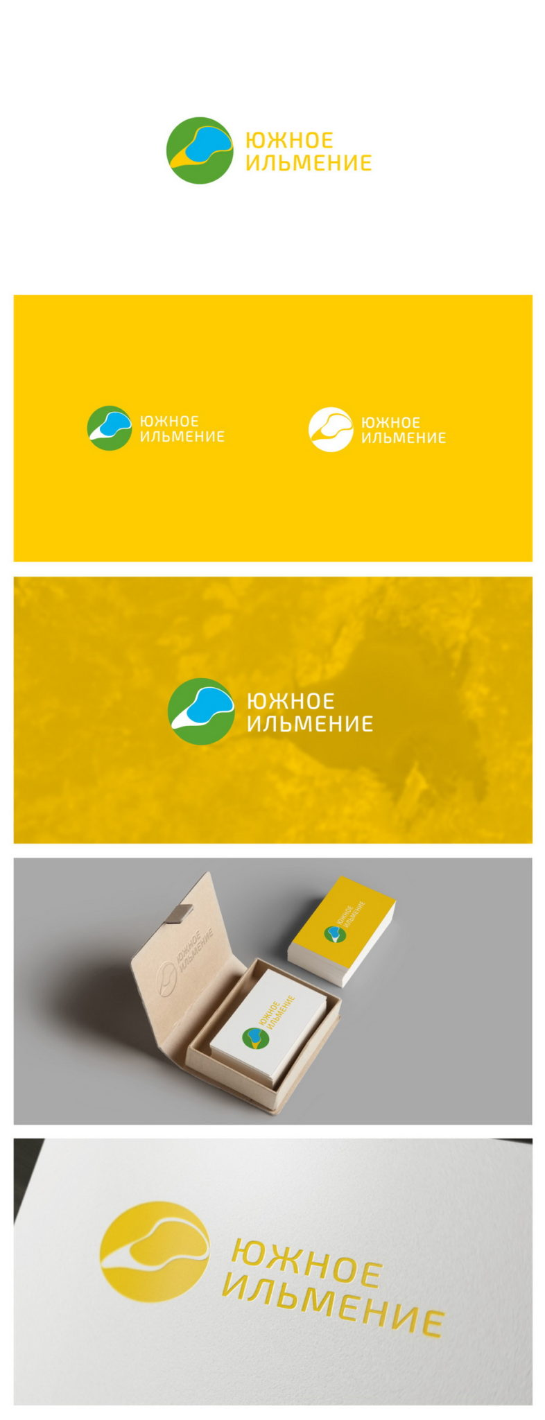 logo, form style, business documentation, Guide on the use of the logo, South ilmenite